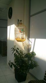 Клиника Деметра, фото №2